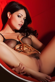 Ava Dalush Sexy Lingerie